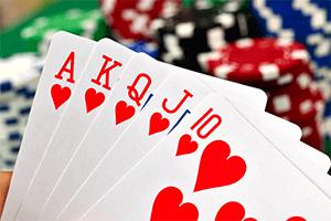 Hertta korttipeli sanasto