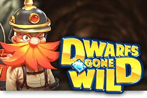 Dwarfs gone wild sanasto