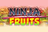 Ninja Fruits sanasto
