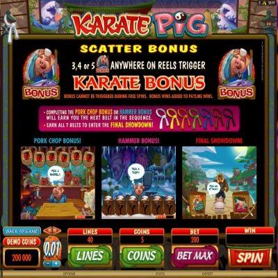 Karate Pig kolikkopeli