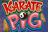 Karate pig sanasto