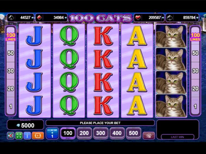 100 Catsiframe